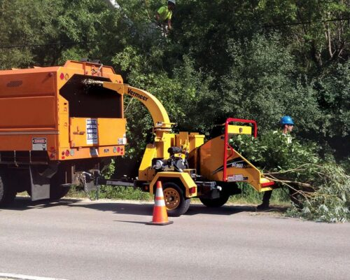Commercial Tree Services-Miami Springs FL Tree Trimming and Stump Grinding Services-We Offer Tree Trimming Services, Tree Removal, Tree Pruning, Tree Cutting, Residential and Commercial Tree Trimming Services, Storm Damage, Emergency Tree Removal, Land Clearing, Tree Companies, Tree Care Service, Stump Grinding, and we're the Best Tree Trimming Company Near You Guaranteed!